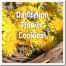 dandelionflowercookies